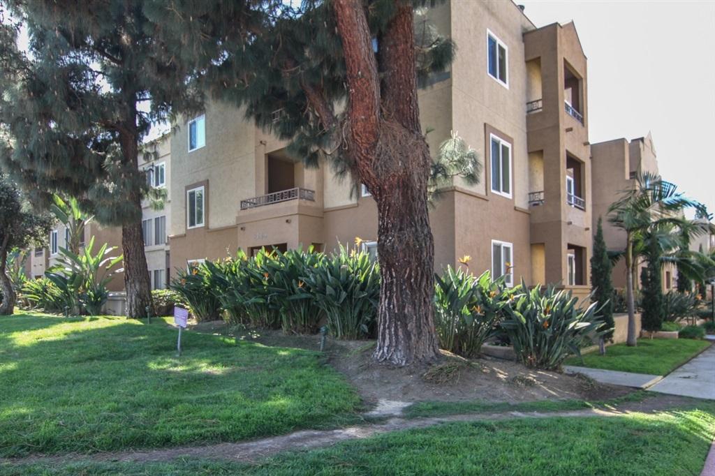 3520 Lebon Dr UNIT 5101 San Diego, CA 92122