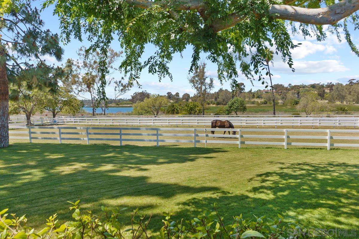 6685 Lago Lindo, Rancho Santa Fe, CA 92067